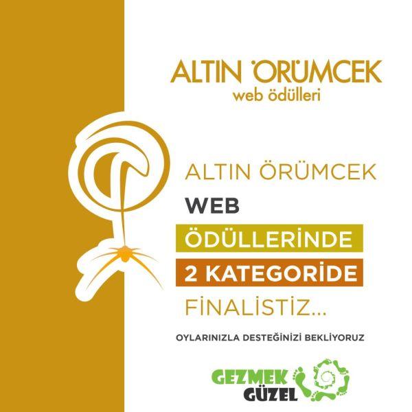 Altın Örümcek Web Ödüllerinde 2 Kategoride Finalistiz