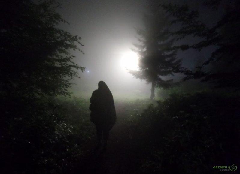 Aybastı Kent Ormanında Gece