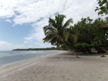 Mahambo Sahili, Tamatave
