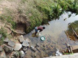 Madagaskar'da Temizlik, Madagaskar Gezi Notları