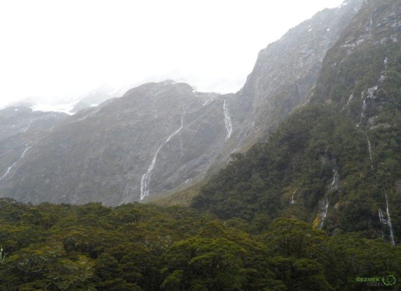 Yeni Zelanda Fiyortları, Milford Sound Yolunda