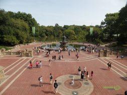 Bethesda Terası ve Havuzu, Central Park Gezisi