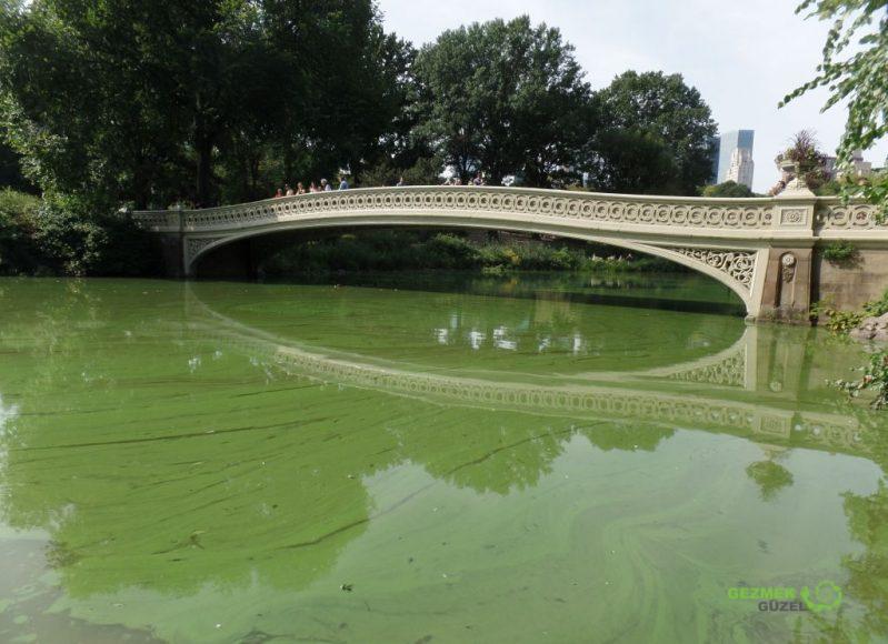 Bow Bridge, Central Park, New York Gezilecek Yerler