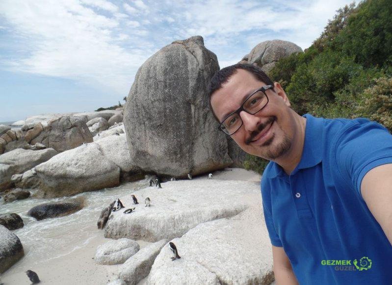 Boulders Koyu, Afrika Penguenleri, Cape Town Gezilecek Yerler