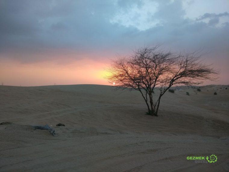 Çölde günbatımı, Dubai Çöl Safarisi