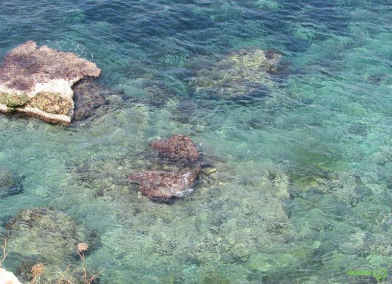 Akdeniz, Tipaza Gezilecek Yerler