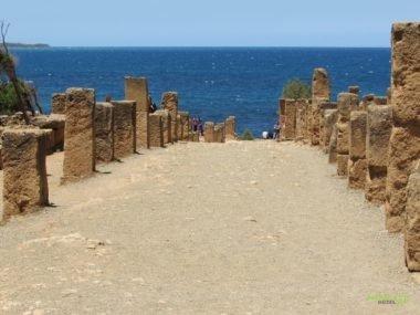 Antik Roma Harabeleri – Cezayir Rehberi
