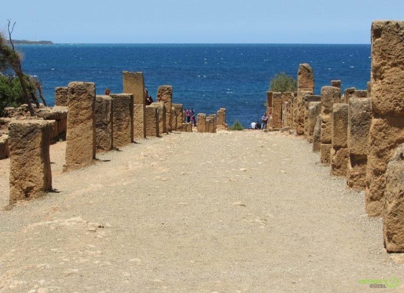 Antik Roma Harabeleri - Cezayir Rehberi