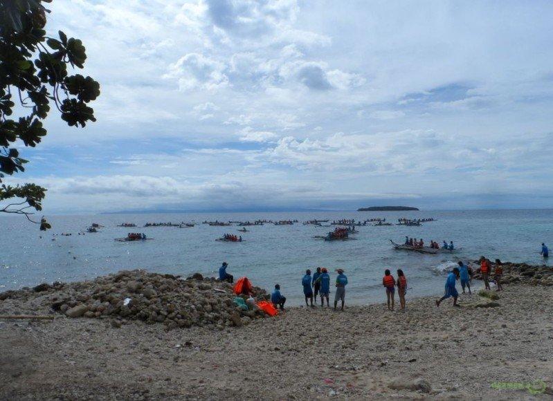 Balina Köpekbalıkları kıyıdan, Balina Köpekbalığı Dalışı, Filipinler Gezisi Notları