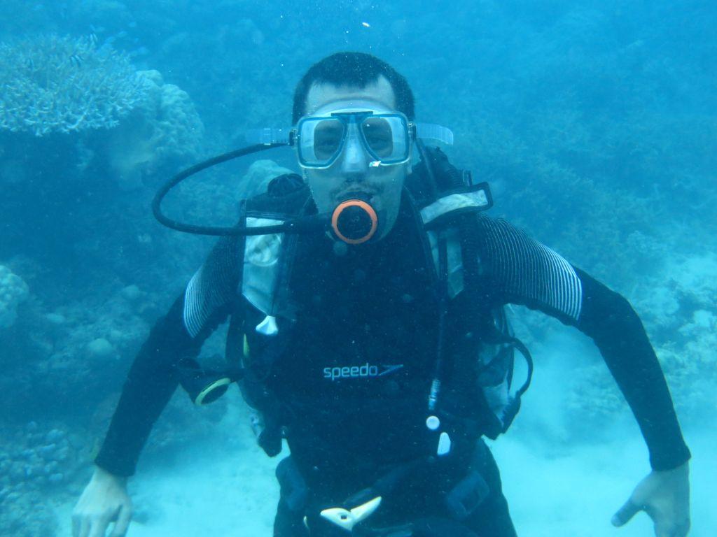 Büyük Resif Dalışı