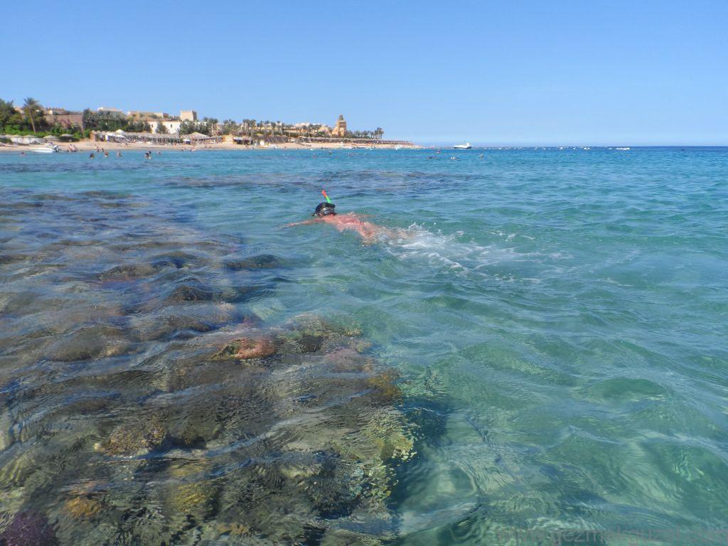 Kıyıda, Resiflerin Üzerinde, Hurghada Resiflerinde Şnorkel