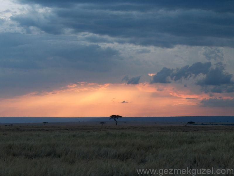 Kenya'da Gün Batımı Safari