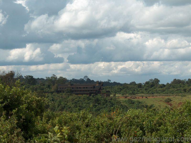 Kenya'da The Ark Otel