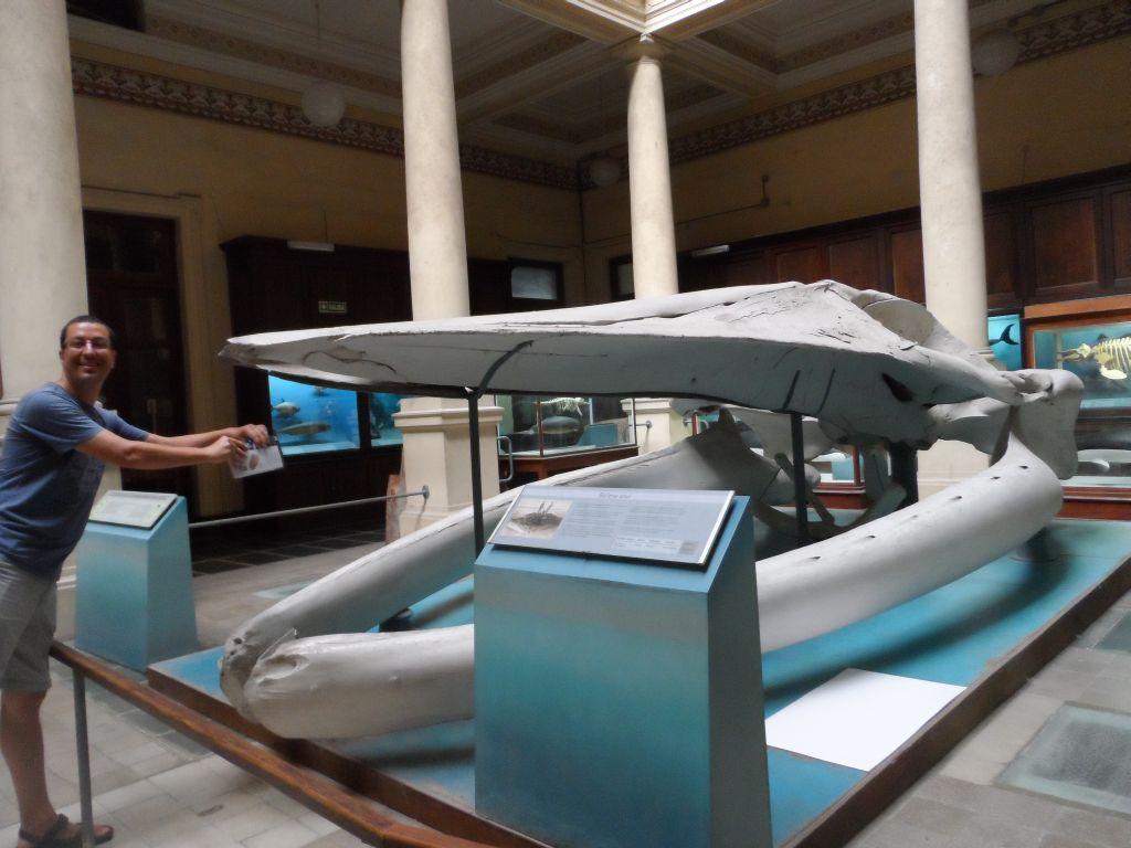 Museo de La Plata'da 4