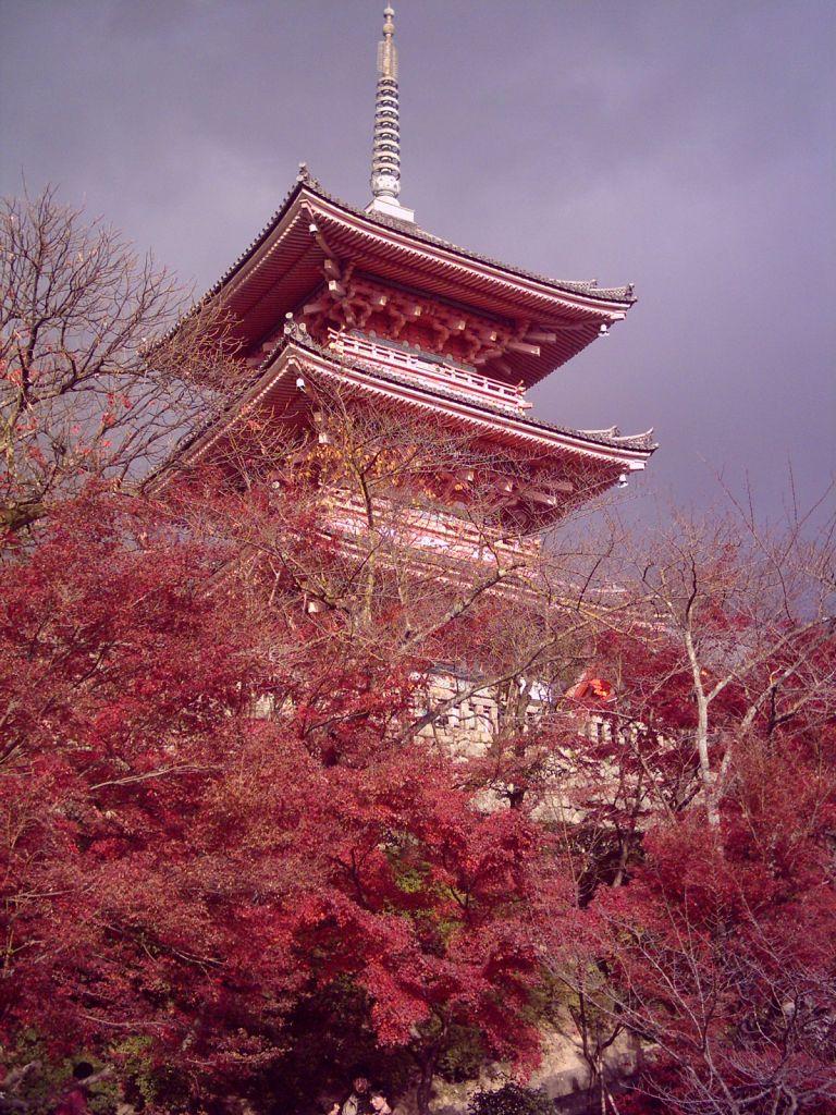 Japonya'nın en yüksek pagodası