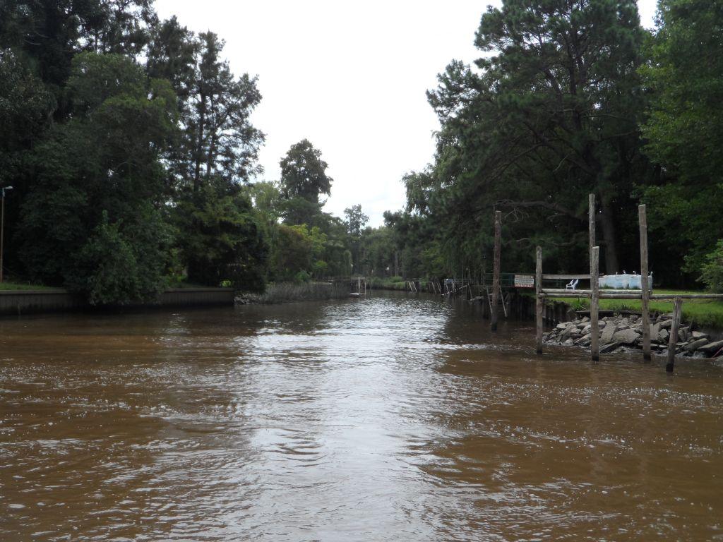 Parana Delta, Tigre