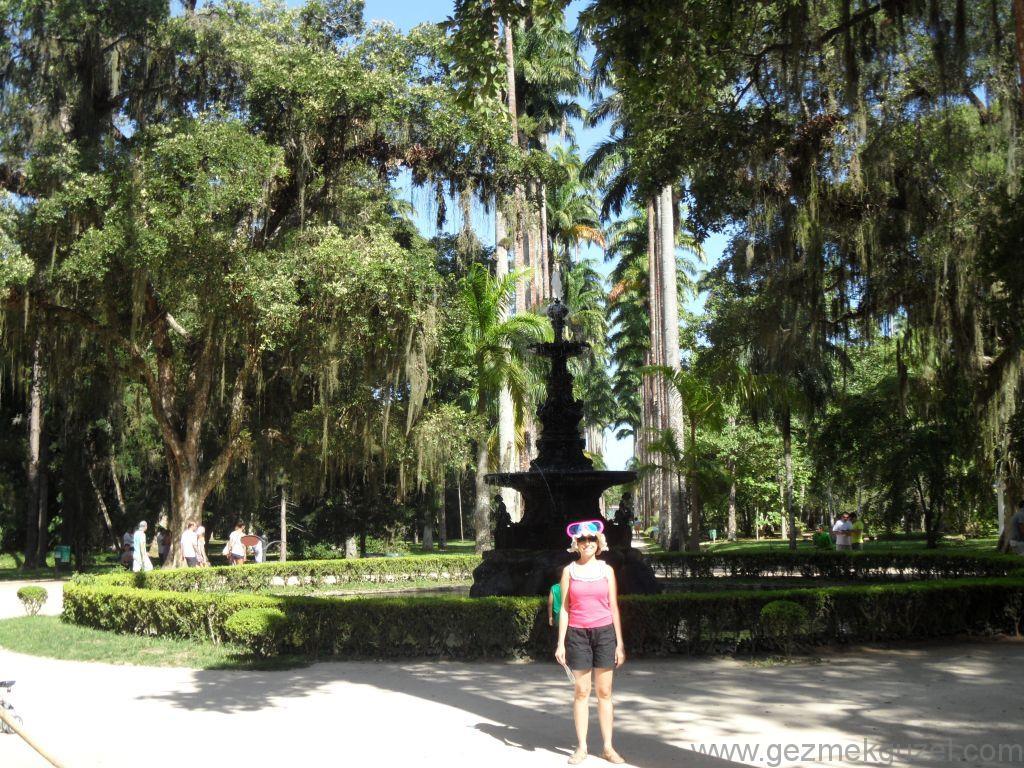Rio de Janerio Botanik Bahçesinde, Rio Gezisi, Brezilya Gezisi Notları