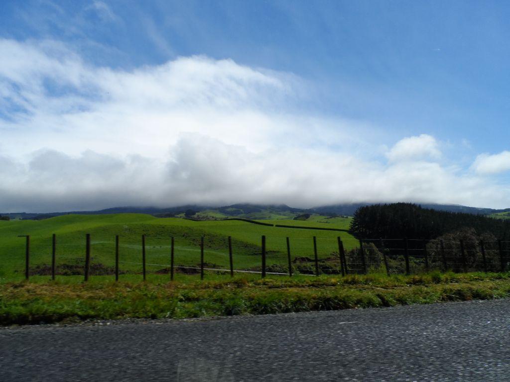Yeni Zelanda yollarında