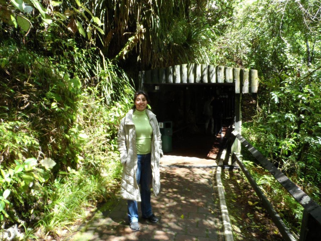 Waitomo mağarası girişi