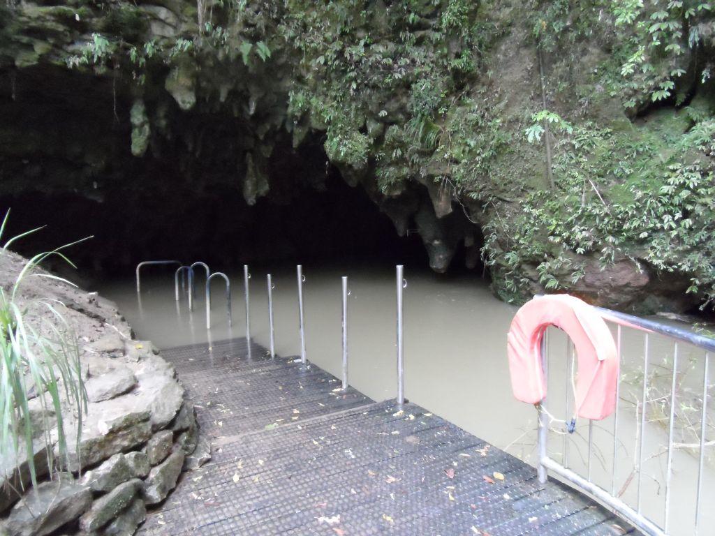 Waitomo mağarası çıkışı