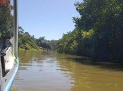 Tortuguero Kanalı, Costa Rika