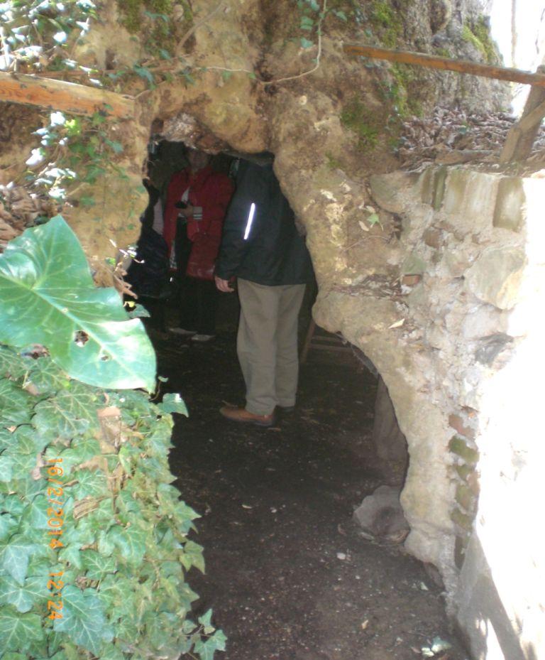 Ressam Theofilos'un içerisinde yaşadığı çınar ağacı